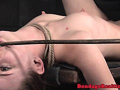 Sybian, Japanese anal asian anal, Nuvid.com