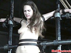 Slave, Videos of lesbian sex slaves, Nuvid.com