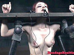 Slave, Redhead, Cruel ladies have fun with a slave, Nuvid.com