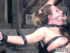 Slave, Swallow, Tied, Fetish slave is tied up outside at night, Gotporn.com