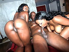 Ebony, Black and ebony rough anal, Txxx.com